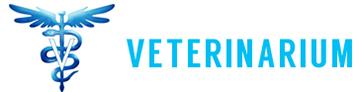 Veterinarium – Cabinet Veterin Buftea | Crevedia | Corbeanca | Ilfov | Flamanzeni
